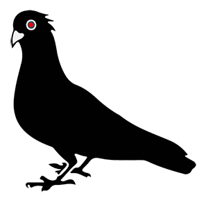 Black Pigeon Speaks